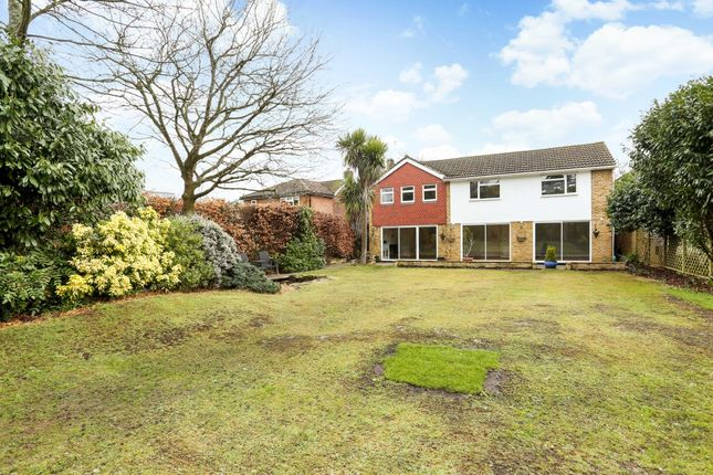 Thumbnail Detached house to rent in Eastwick Road, Burwood Park, Hersham, Walton-On-Thames