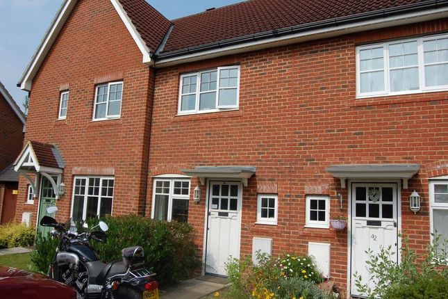 Thumbnail Terraced house to rent in Queens Road, North Warnborough, Hook