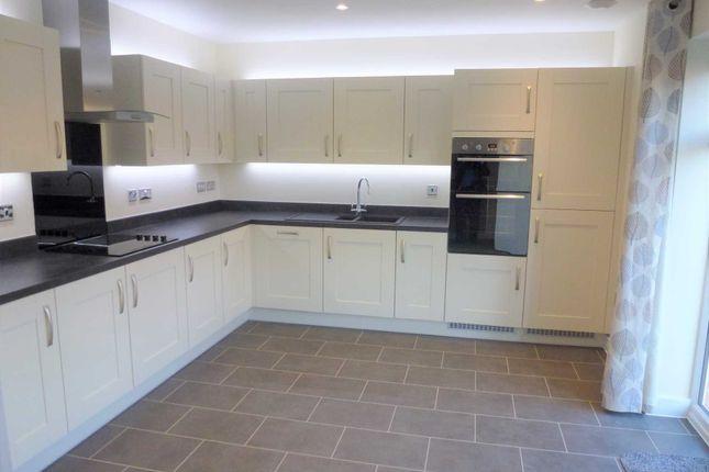 Thumbnail Detached house to rent in Kestrel Row, Southam Grange, Southam