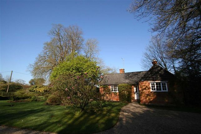 Thumbnail Detached bungalow to rent in Sandleford, Newtown, Newbury