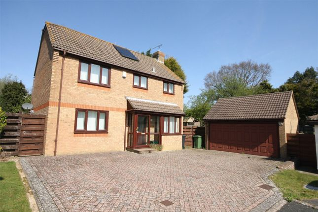 Thumbnail Detached house for sale in Prowting Mead, Little Common, Bexhill On Sea