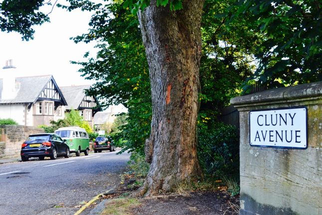 Thumbnail Semi-detached house to rent in Cluny Avenue, Morningside, Edinburgh