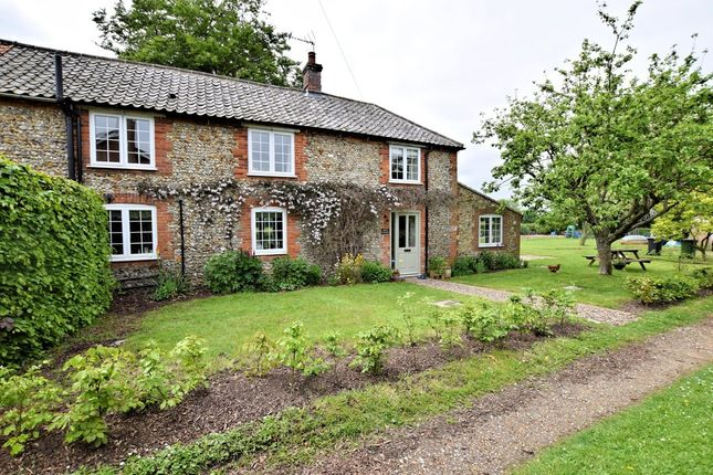 Thumbnail Cottage to rent in Mill Road, Bintree, Dereham