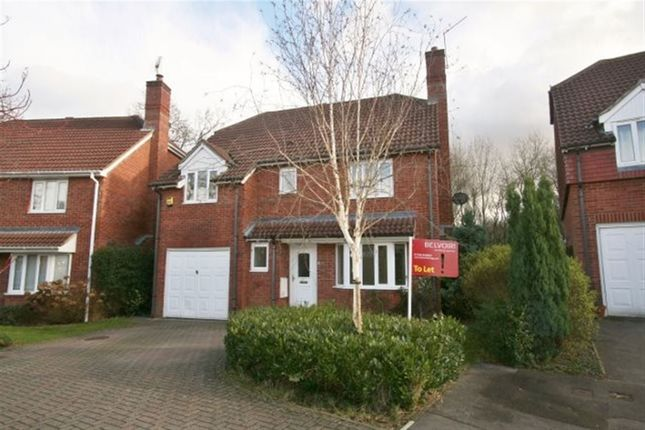 4 bed detached house to rent in Clere Gardens, Chineham, Basingstoke