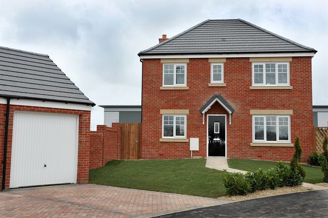 "Thumbnail Detached house for sale in ""Cherryburn"" at Links Crescent, Seascale"