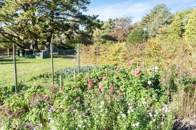Garden of Washington Road, Storrington RH20