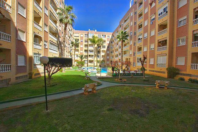 Calle Gavia, Torrevieja, Alicante, Valencia, Spain