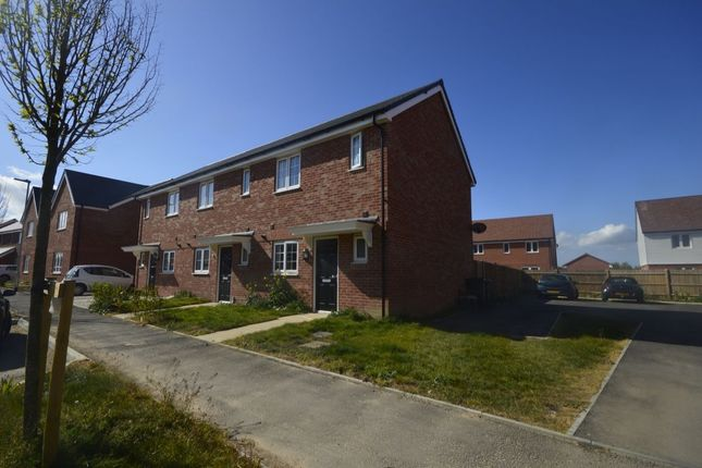 Thumbnail Semi-detached house to rent in Hyton Drive, Deal