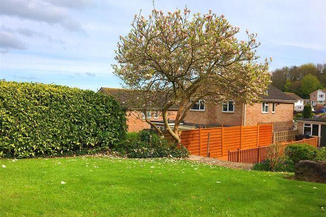 Garden of Lancaster Drive, Paignton TQ4
