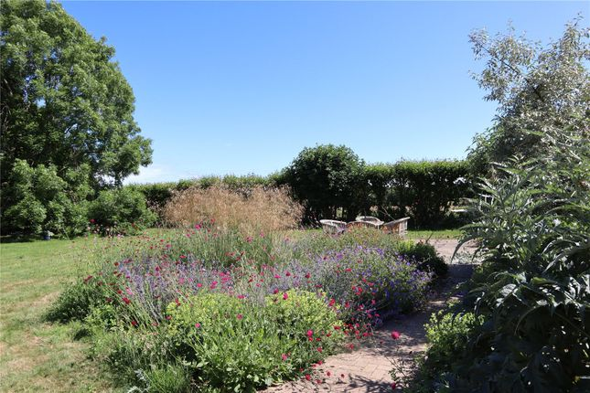 Garden of Woodchurch, Ashford, Kent TN26