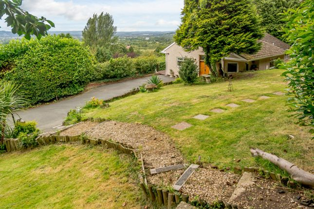 Thumbnail Detached bungalow for sale in Dog Lane, Witcombe, Gloucester