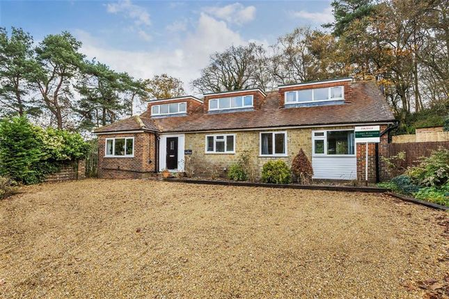 Thumbnail Detached house for sale in Pine Close, Midhurst, West Sussex