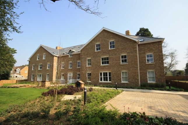 Thumbnail Flat To Rent In Langdon Park Teddington