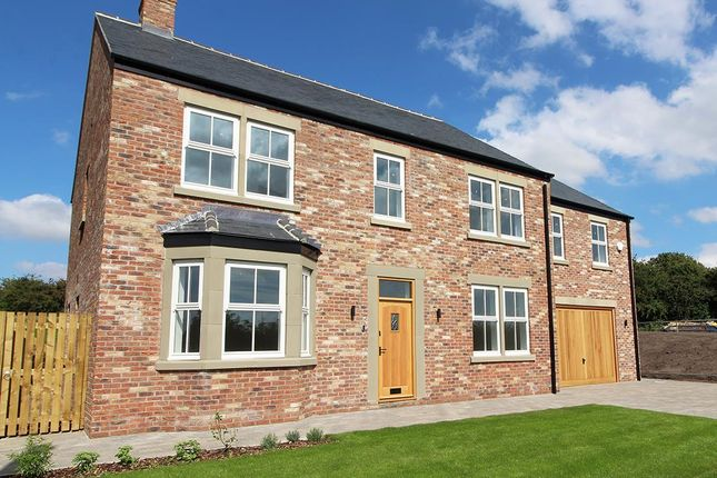Thumbnail Detached house for sale in 14 The Green, Pickhill, Thirsk