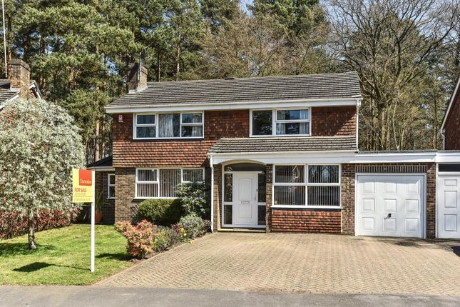 Thumbnail Link-detached house for sale in Windlesham, Surrey