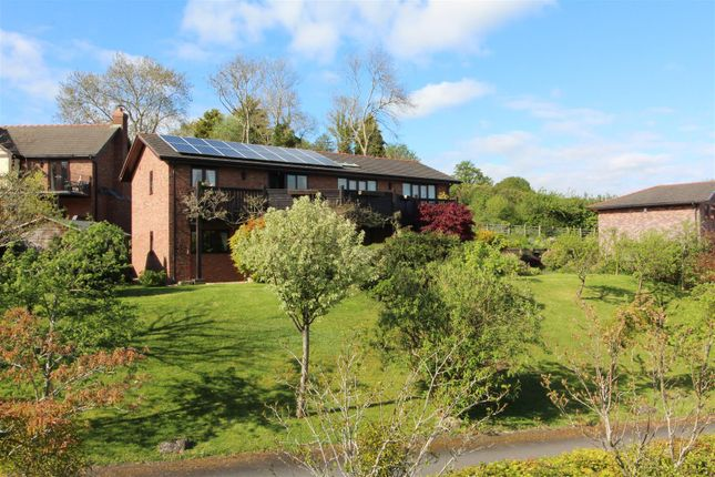 Thumbnail Detached house for sale in Edwards Close Briggs Lane, Pant, Oswestry