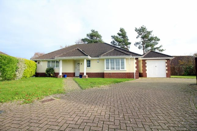 Thumbnail Detached bungalow for sale in St. Martins Road, Upton, Poole