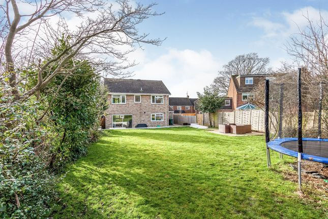 Thumbnail Detached house for sale in The Spinney, Crawley
