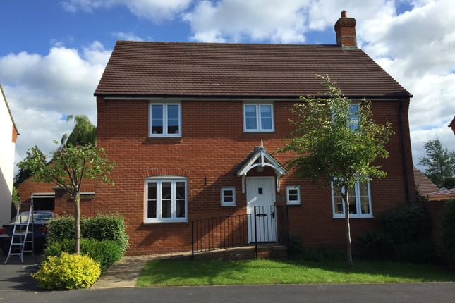 Thumbnail Detached house to rent in Bayfields, Gillingham