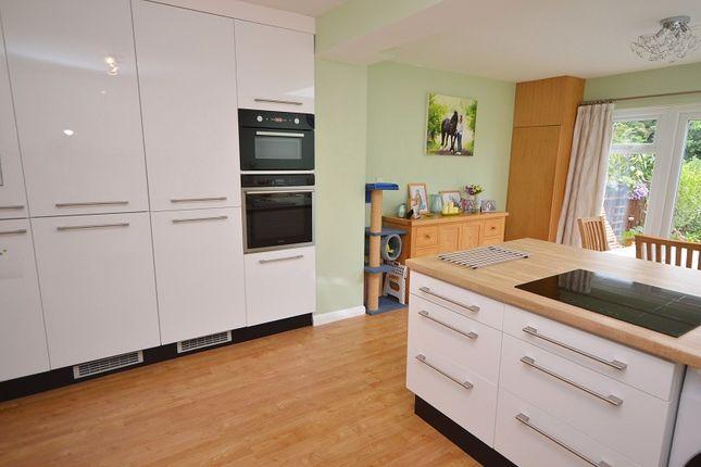 Kitchen Dining Room Extra 2