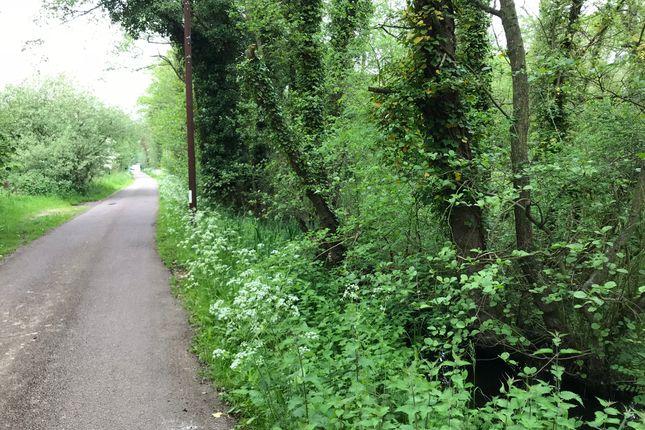 Thumbnail Land for sale in Ferry Road, Surlingham, Norwich