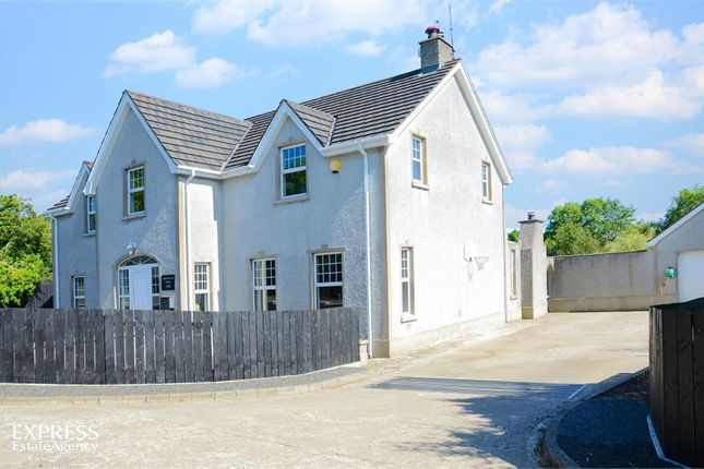 Thumbnail Detached house for sale in Boleran Road, Ringsend, Coleraine, County Londonderry