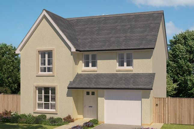 "Thumbnail Detached house for sale in ""Cullen"" at Salters Road, Wallyford, Musselburgh"