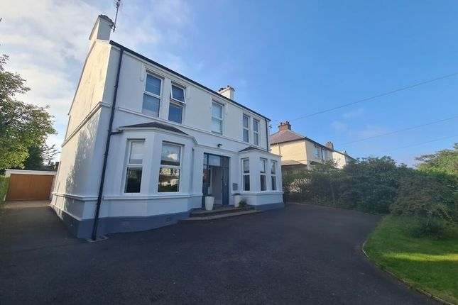 Thumbnail Detached house for sale in College Avenue, Bangor
