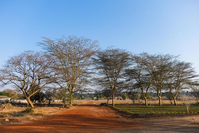Thumbnail Land for sale in Cecil Road, Greendale, Harare East, Harare, Zimbabwe