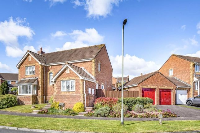 Thumbnail Detached house for sale in Heron Road, Honiton, Devon