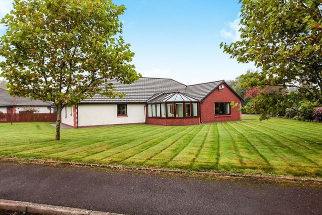 Thumbnail Bungalow for sale in Maxwelltown Gardens, Dumfries