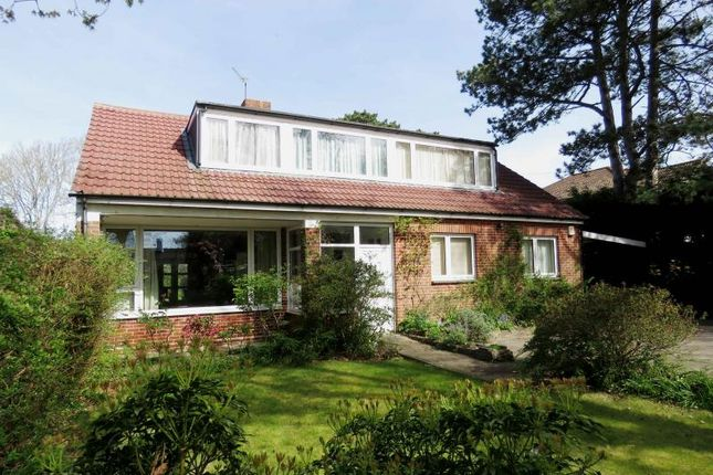 Thumbnail Detached house for sale in St. Catherines Road, Hayling Island