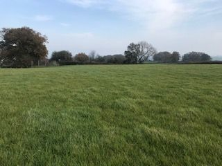 Thumbnail Land for sale in Broad Oak, Hereford