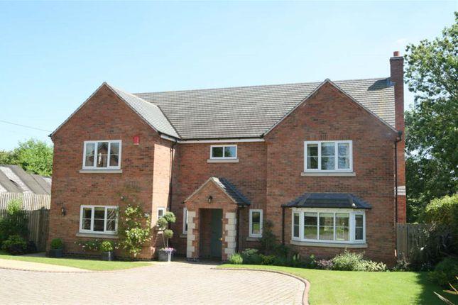 Thumbnail Detached house for sale in Manor Lane, Langham, Oakham