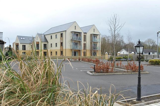Thumbnail Flat for sale in 14, Erne Marine, Enniskillen