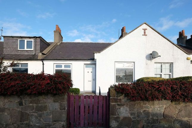 Thumbnail Terraced bungalow for sale in 80 Longstone Road, Longstone, Edinburgh
