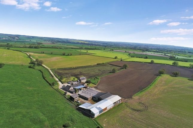 Thumbnail Farm for sale in Riseborough, Pickering