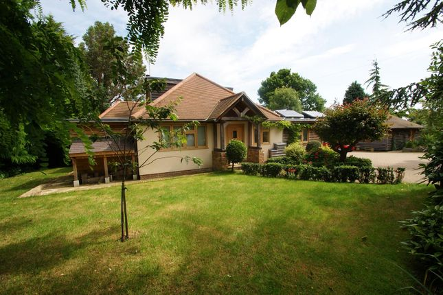 Thumbnail Detached house for sale in Warwick Road, Rayleigh