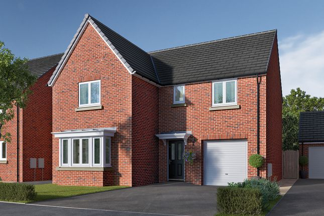 "Thumbnail Detached house for sale in ""The Grainger"" at Ripon Road, Killinghall, Harrogate"
