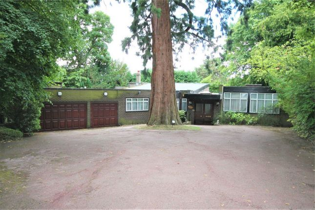 Thumbnail Detached bungalow to rent in Aylmer Drive, Stanmore, Middlesex