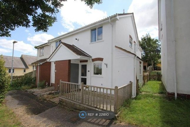 Thumbnail Semi-detached house to rent in Webber Close, Newton Abbot
