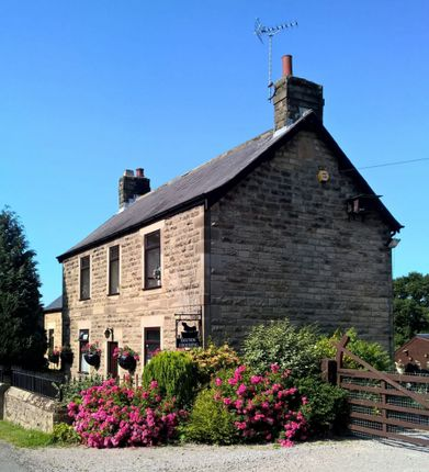 Thumbnail Property for sale in Butterfield Lane, Brackenfield, Alfreton, Derbyshire
