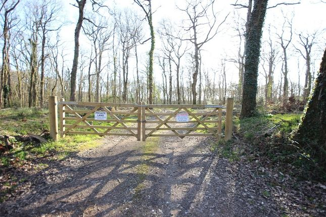 Thumbnail Land for sale in West Ogwell, Newton Abbot
