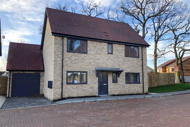 Thumbnail Detached house for sale in Blackwell Close, Stevenage, Hertfordshire