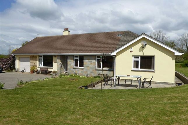 Thumbnail Detached bungalow for sale in Middlecott, Brandis Corner, Holsworthy