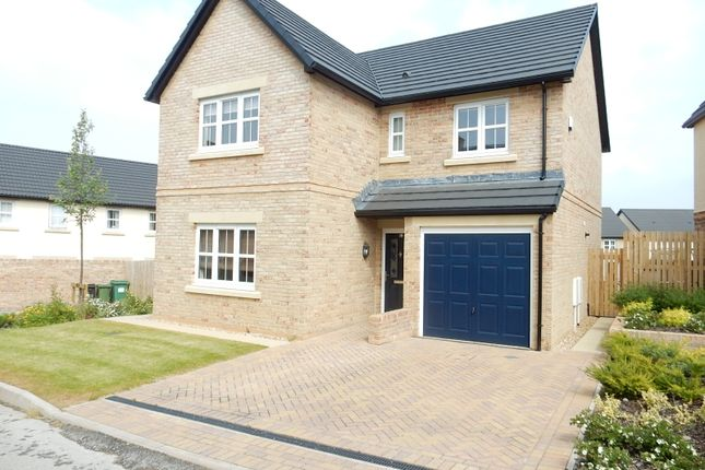 Thumbnail Detached house for sale in Cherry Tree Drive, Stainburn, Workington