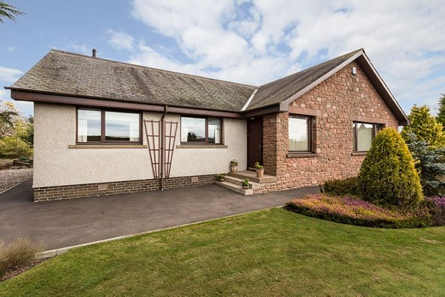 Thumbnail Bungalow for sale in Whig Street, Kirkbuddo, By Forfar, Angus