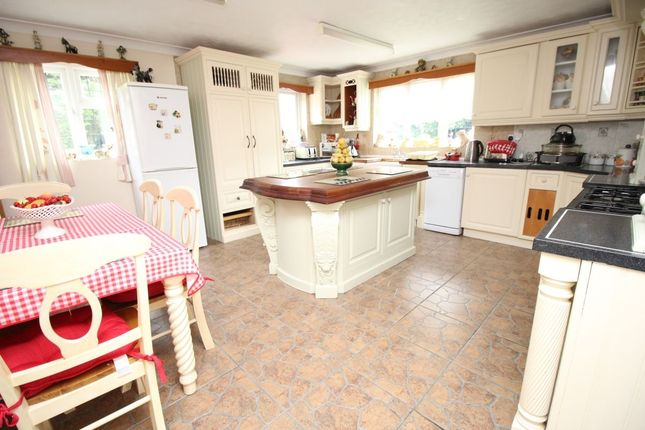 Thumbnail Detached house to rent in Little Meadow Bilsham Road, Yapton, Arundel