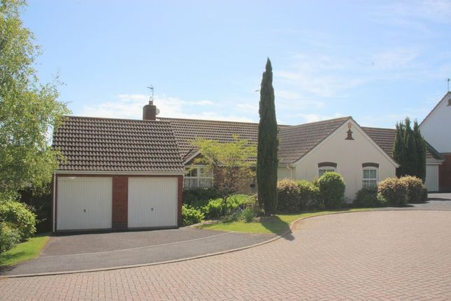 Thumbnail Detached bungalow for sale in Albion Close, Seaton
