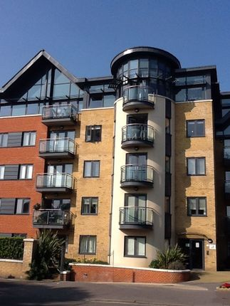 Thumbnail Flat to rent in New Church Road, Hove